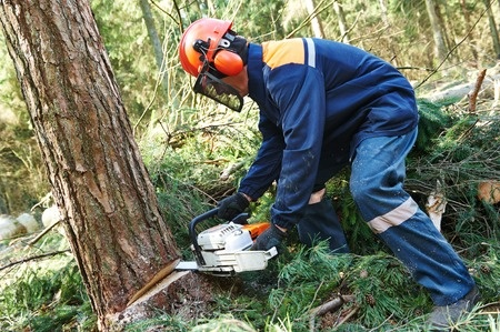 chainsaw injuries