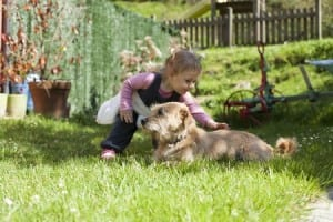 pet safety tips children