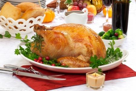 turkey safety tips