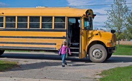 seat belts in school buses