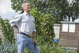 Gardening safety tips
