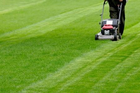 spring lawn safety