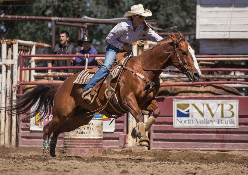 rodeo injury